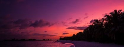 Fondo tropicale di tramonto della spiaggia Immagine Stock