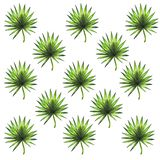 Fondo tropicale disegnato a mano delle foglie royalty illustrazione gratis