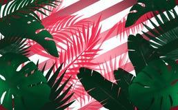 Fondo tropicale, foglie verdi su un colore porpora, bande illustrazione di stock