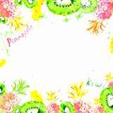 Fondo tropicale fresco disegnato a mano dei friuts dell'acquerello illustrazione di stock