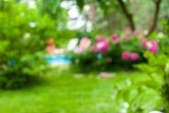 Fondo vago del giardino con i fiori del fiore, l'erba e uno stagno immagine stock