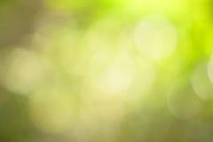 Fondo vago verde naturale Immagini Stock Libere da Diritti