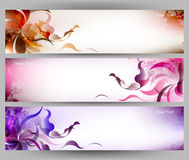 Fondo variopinto astratto di vettore del fiore e della farfalla Fotografia Stock Libera da Diritti