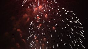 Fondo variopinto dei fuochi d'artificio di festa nel telaio orizzontale stock footage