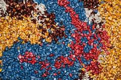 Fondo variopinto del seme del mais del cereale Immagine Stock Libera da Diritti