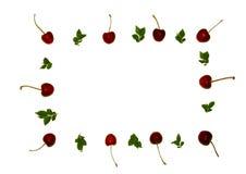 Fondo variopinto delle ciliege e delle foglie verdi sottragga la priorità bassa Molte bacche Ciliege con un ramoscello Fotografia Stock Libera da Diritti