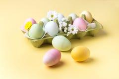 Fondo variopinto delle uova di Pasqua con i fiori gialli delle uova di Pasqua del fondo delle uova di Pasqua Fotografia Stock