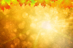 Fondo variopinto dello spazio della copia di stagione di autunno illustrazione di stock