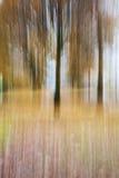 Fondo variopinto di autunno della natura astratta Fotografie Stock