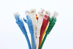 Fondo variopinto di bianco di lan dei cavi di Ethernet di UTP Fotografia Stock Libera da Diritti
