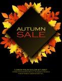 Fondo variopinto di carta delle foglie di autunno Porcile d'avanguardia del taglio della carta 3d Fotografia Stock Libera da Diritti