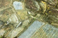 Fondo variopinto di struttura e di Diamond Shape Grungy Patterns Fotografia Stock Libera da Diritti