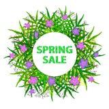 Fondo variopinto di vendita della primavera con le foglie verdi, rami, perno Fotografia Stock