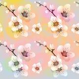 Fondo variopinto di vettore con i fiori illustrazione di stock