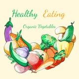 Fondo vegetal Fondo del menú de la comida de Eco Verduras dibujadas mano de la acuarela Consumición sana Ilustración del Vector