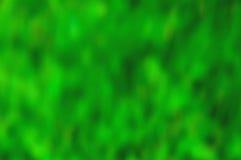 Fondo verde Imágenes de archivo libres de regalías