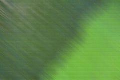 Fondo verde fotografía de archivo libre de regalías