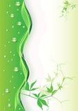 Fondo verde abstracto con gotas. Imágenes de archivo libres de regalías