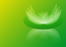 Fondo verde abstracto de lirio de agua Imágenes de archivo libres de regalías