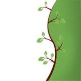 Fondo verde abstracto del árbol Imágenes de archivo libres de regalías