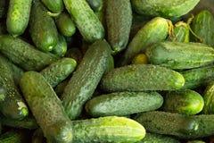 Fondo verde Cibo organico Rivenditore di agricoltura Alimento della natura del ` s dell'agricoltore cetriolo fresco nel supermerc Fotografie Stock Libere da Diritti