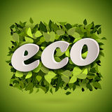 Fondo verde claro abstracto del eco Imagen de archivo libre de regalías