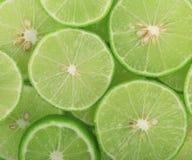 Fondo verde con agrumi delle fette della calce fotografia stock libera da diritti