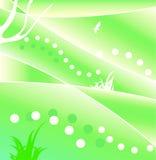 Fondo verde con el águila. Imagen de archivo libre de regalías