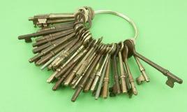 Fondo verde con el anillo de claves Foto de archivo libre de regalías