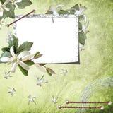 Fondo verde con el marco Fotografía de archivo libre de regalías