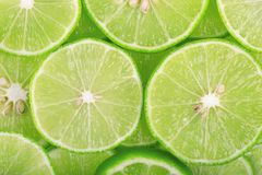 Fondo verde con gli agrumi delle fette della calce fotografia stock