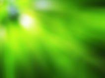 Fondo verde con i raggi vaghi Fotografie Stock