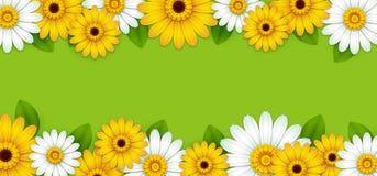 Fondo verde con las flores hermosas libre illustration