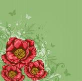 Fondo verde con las flores rojas Foto de archivo libre de regalías