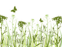 Fondo verde con las flores y las mariposas Imágenes de archivo libres de regalías