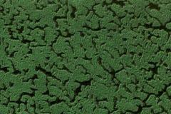 Fondo verde da una materia tessile molle della tappezzeria, primo piano Immagine Stock Libera da Diritti