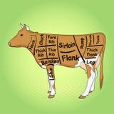 Fondo verde de arte pop La vaca para el restaurante se divide en las piezas, pedazos de res muerta de la carne de vaca del toro,  Imagenes de archivo