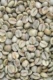 Fondo verde de grano de café Foto de archivo