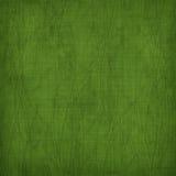 Fondo verde de Grunge con el ornamento antiguo Imagen de archivo libre de regalías