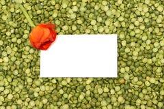 Fondo verde de guisantes con la flor anaranjada fotografía de archivo