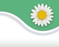 Fondo verde de la flor stock de ilustración