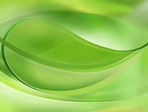 Fondo verde de la hoja libre illustration