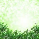 Fondo verde de la Navidad Foto de archivo