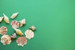 Fondo verde de la playa Foto de archivo libre de regalías