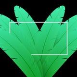 Fondo verde de la pluma Composición abstracta con el marco blanco ilustración del vector