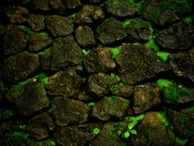 Fondo verde de la roca Foto de archivo