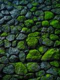 Fondo verde de la roca Imagenes de archivo