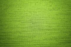 Fondo verde de la textura Fotos de archivo libres de regalías