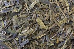 Fondo verde de las hojas de té Fotos de archivo libres de regalías