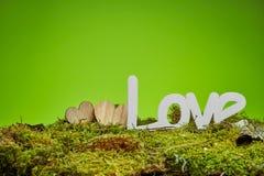 Fondo verde de las tarjetas del día de San Valentín del bosque imágenes de archivo libres de regalías